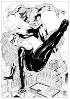 Spider Man and Black Cat Inks by ajbishop