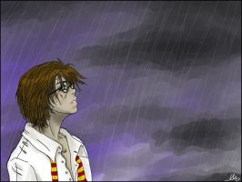 Harry in the rain by Enide-Kant