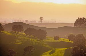 Tuscan Dawn, Hobitton Style! by Capturing-the-Light