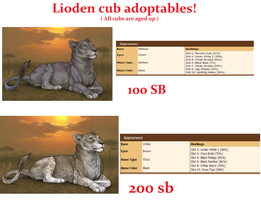 Lioden cub adopts 2 by SassyHonks