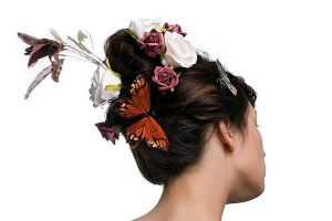 Butterfly Hair by Jacinta-Lee