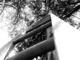 Black and White Ladder by karterbeth