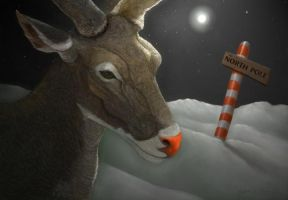 Rudolf at the North Pole by Nyrak