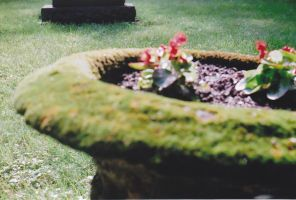moss planter 2 by thePARANOIDghost