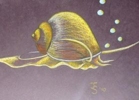 Golden mystery snail by snakehands