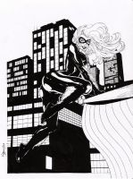 black cat3 by amorimcomicart
