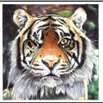Ballpoint Pen - One Eyed Tiger by Godofpen