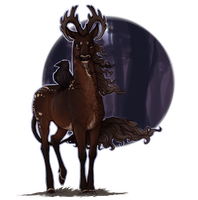 Reilley | Blackwood Stag | Witch by ofcowardiceandkings