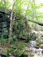 A Wall in the Woods 3 by MorganCG