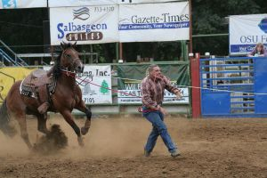 rodeo 02: calf roping by cyborgsuzystock