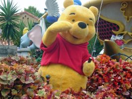 Pooh on the Float Day Parade by WDWParksGal-Stock