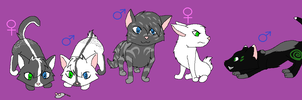 Lime and Snowsong's kittens by GypsyCrest19