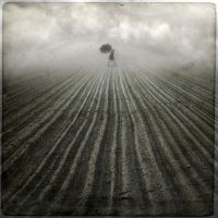 badWeather by anapt