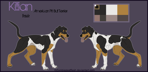 Killian Ref Sheet by ZombiezEatFlesh
