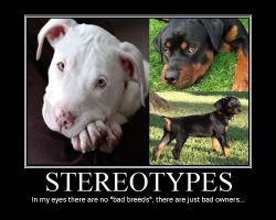 """Vicious Dog"" Stereotypes by TheWSB"