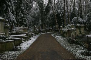 Highgate Cemetery 03 by Arctictouch
