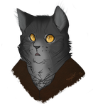greystripe's gone anthro by HulluMel