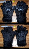 Black Paws by LastHarliquin