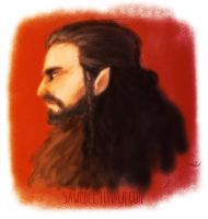 Thorin Smokin'shield by sawebee