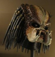 Predator 1:1 Head by PredatrHuntr