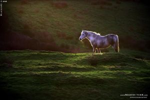 Ireland 02 by BlackdoG-MT