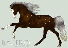 Baliro Import (for group sales) by Nuuhku87
