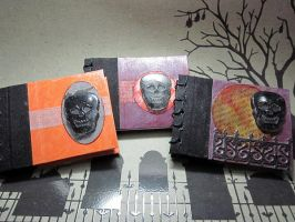 Skull logbooks by frykitty