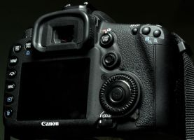 Canon Back by cathy001