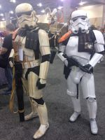 Phoenix Comicon 2014 Storm Troopers by Demon-Lord-Cosplay