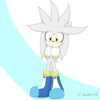 Silver ^-^ by xShadilverx