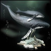 -Humpback whale- Sculpture by Sculptor-Robert-D