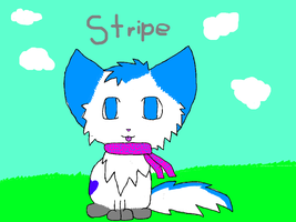 Stripe by StripeKatOwO
