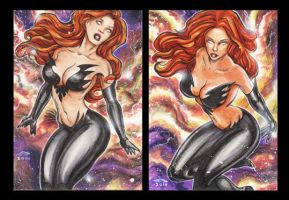 BLACK PHOENIX PERSONAL SKETCH CARDS by AHochrein2010
