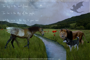 Husky, horse and Lion by Camalla
