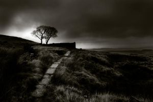 Top Withins, Yorkshire, UK by craig-352