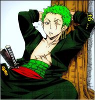 Zoro l 2 years later by LadyNoa