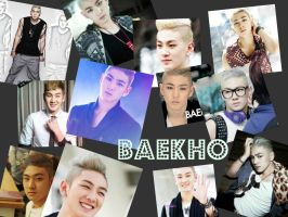 Baekho collage by AndyAndreutZZa
