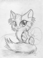 :cute kitty: by shadowundergroundgoh