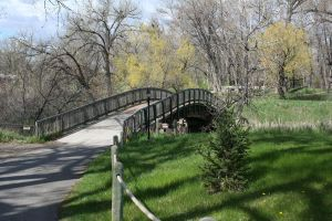 Zoo Montana Bridge 27 by Falln-Stock