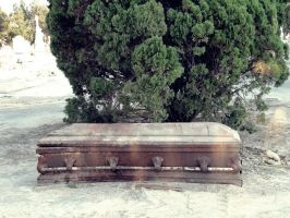 Strange casket unburied by mtyplaces