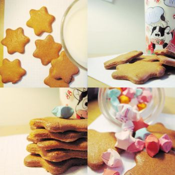 cookies with milk by artahh