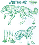 Wolfhound sketches by naravox