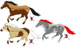 Horse- Point adopts 11 -CLOSED- by Crystal-09