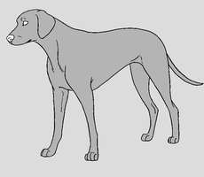 Dog Template - Dalmatian by NaruFreak123-Bases