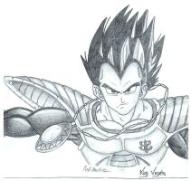 King Vegeta by brollybg