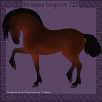 Winter Import 727 by Psynthesis