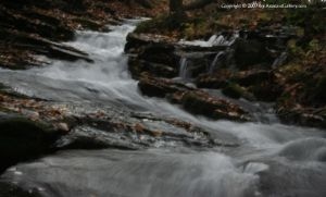 Pond Run Creek 2 by The-Assistant