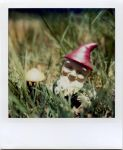 a wee gnome at home by futurowoman