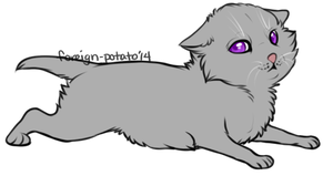 Warrior Cat Lines: Kit (.psd and MS paint version) by foreign-potato