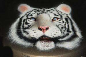 Airbrushed White Tiger Hood by MikeLangston